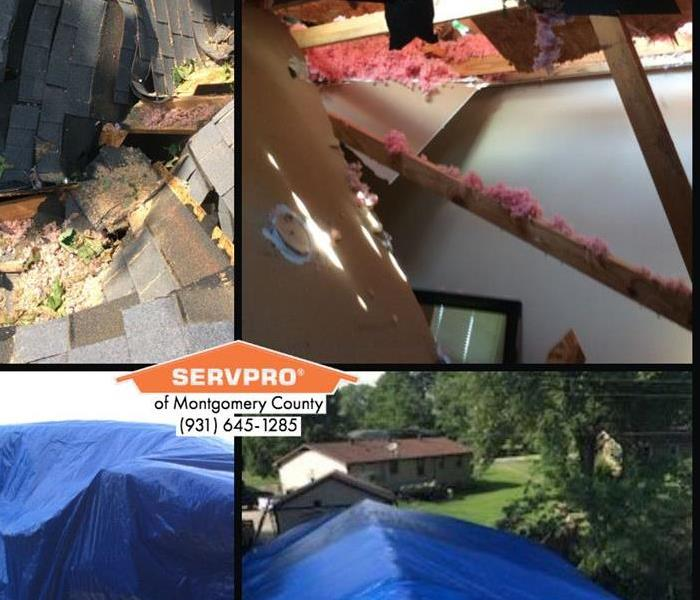 SERVPRO Building Services
