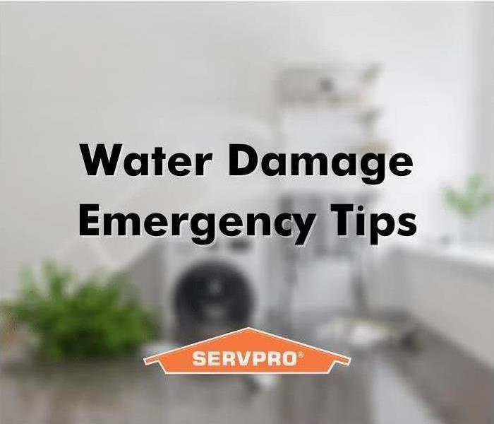 water damage tips