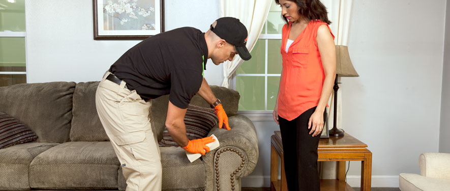Clarksville, TN carpet upholstery cleaning