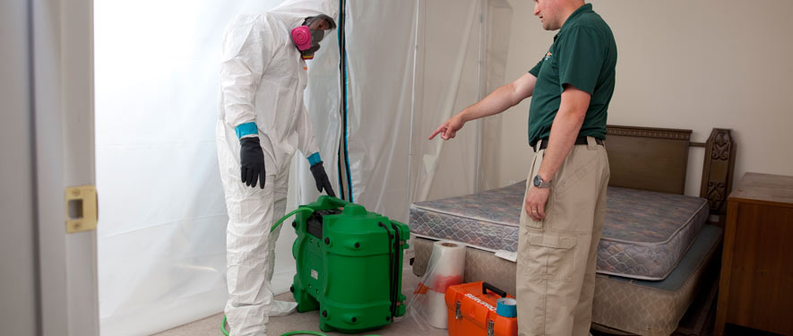 Clarksville, TN mold removal process